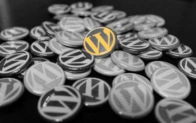 Using WordPress to benefit your business